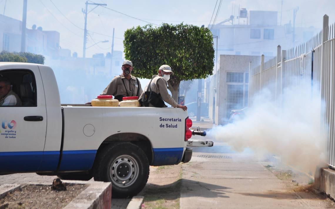 Tiene Irapuato primer lugar con más casos de dengue en el estado - El Sol de Salamanca